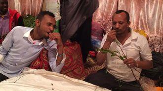 なぜエチオピアは「薬物」を輸出しているのか
