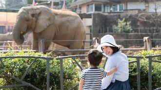 まるで動物園「中高生への過保護」が生む悪循環
