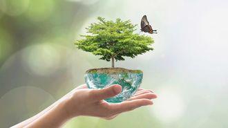 「エコロジー」の真実をどれだけ知っていますか