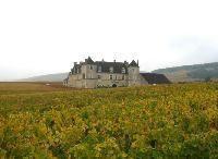 フランスワインの定着 その3:ブルゴーニュワイン《ワイン片手に経営論》第7回