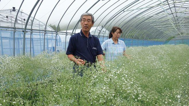 飯舘村の「帰還農家」で咲かせた未来への希望