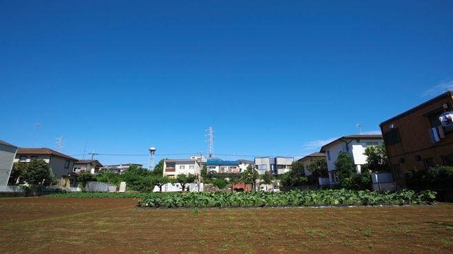 2022年に破裂する「生産緑地」という時限爆弾