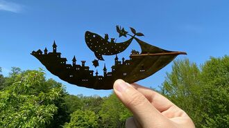 1枚15万円、あまりに美しい「葉っぱアート」の世界