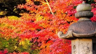 米国の「小さな不安」が日本株急落につながる