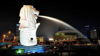 超高度!シンガポール「日本酒ブーム」の実態