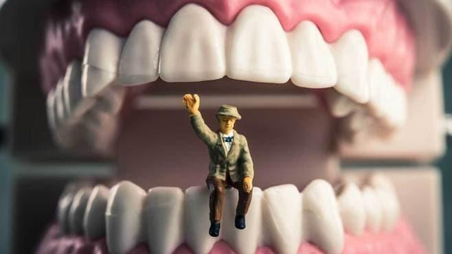 歯を失ったあの人がすがる「移植」という選択