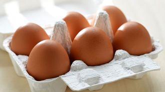 卵は冬場「生でも57日食べられる」という真実