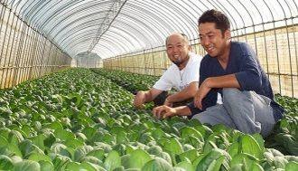 ヤンキーの気合い、日本の農業に挑む