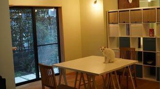 三軒茶屋「保護猫と共存する賃貸住宅」の実態