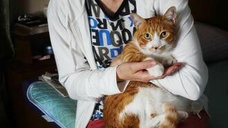 「ペット飼う高齢者」が直面する厄介すぎる問題