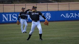 プロ野球「春季キャンプ」が宮崎に与えた貢献