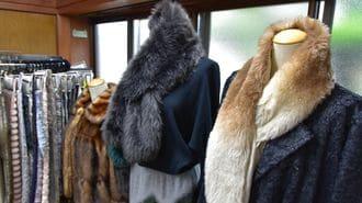 和歌山の小さな織物会社に世界中から熱視線
