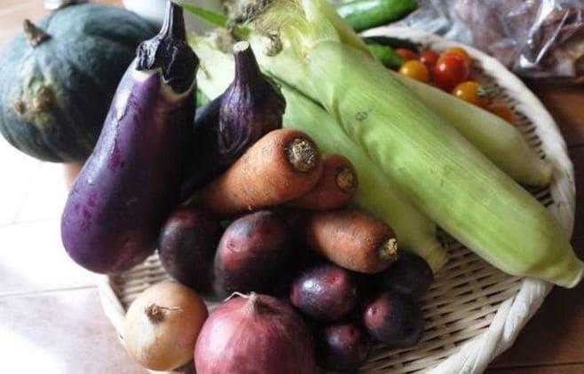 オーガニックを日常に!「my農家制度」の挑戦