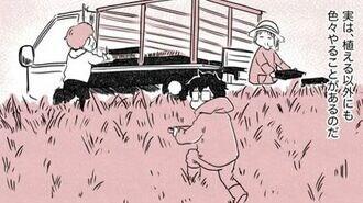 田舎暮らしを始めた僕が田植えから学んだこと