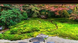 Japan's Unique View of Nature