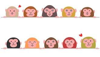話題沸騰!「類人猿分類法」は何がすごいのか