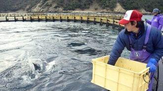 「70年ぶり大改革」で日本漁業は復活するか