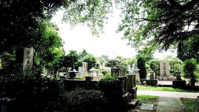 物理学者の墓を訪ねて考えさせられること