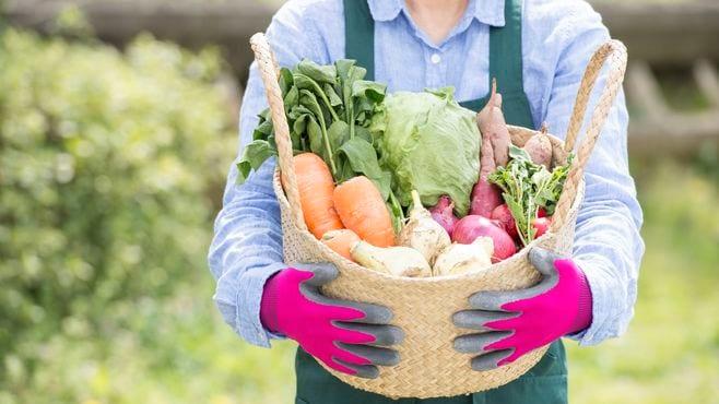 「農業は儲からない」という説の大いなる誤解