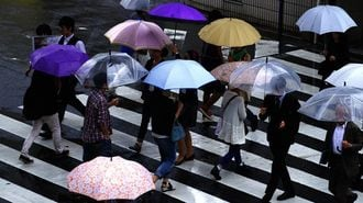 Umbrella Heist Dampens Japanese City's Spirits