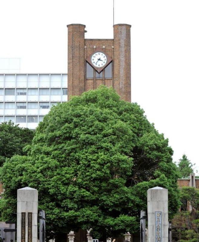 第1回 日本の経済学・経営学の研究力は高くない