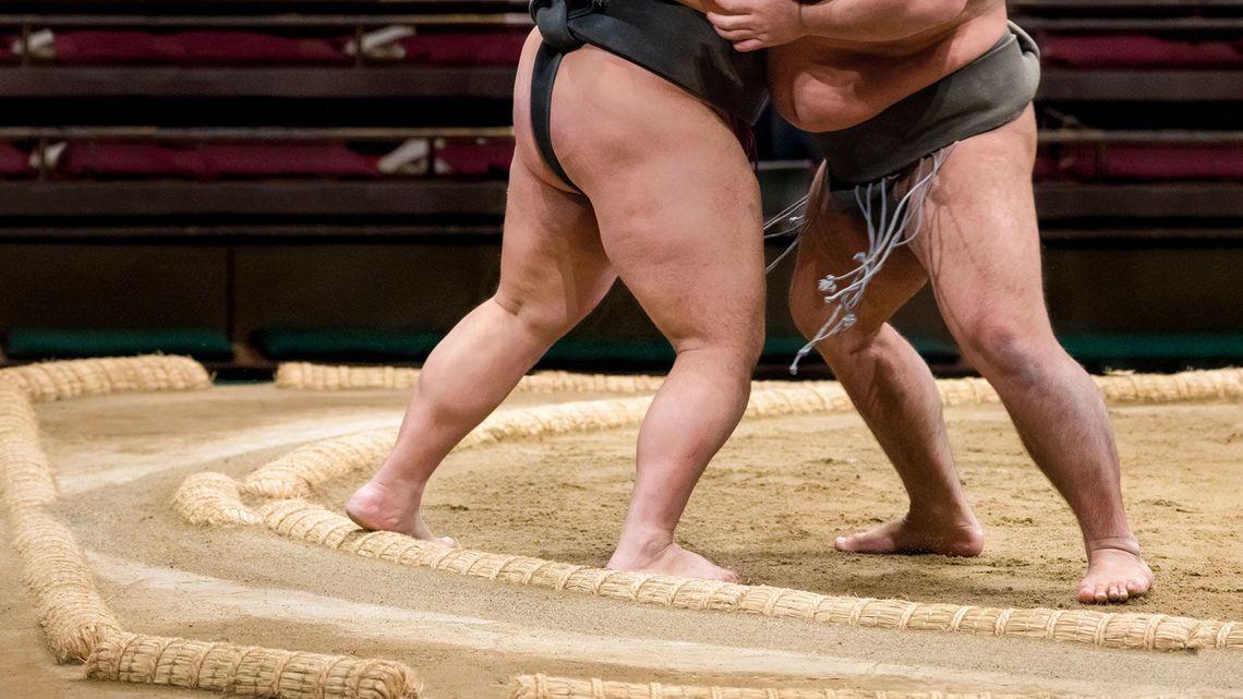 相撲は国技」の看板を信じてはいけない理由 | スポーツ | 東洋経済 ...