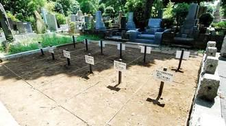 青山墓地が最安値427万円でも大人気のワケ