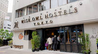 The Hostel That Never Sleeps (and Has a Friendly Pet Owl!)