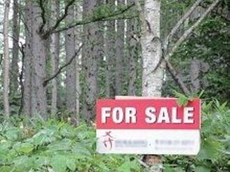 日本の森林が危ない、外資の買収に、所有者の所在不明