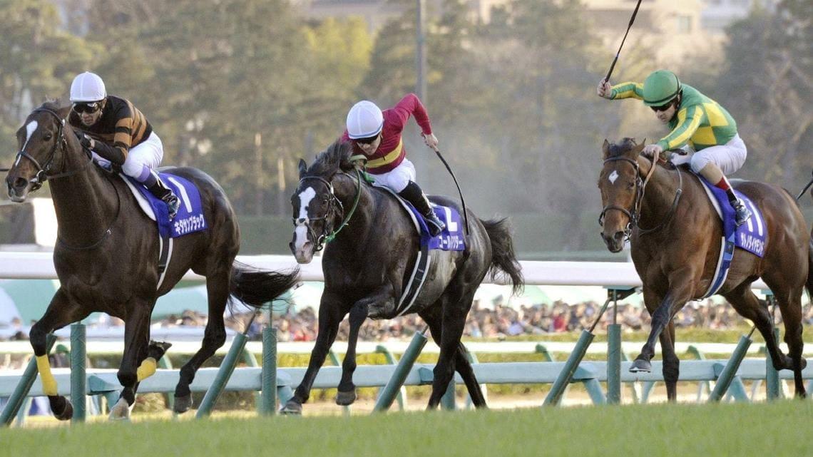 「競馬 写真」の画像検索結果