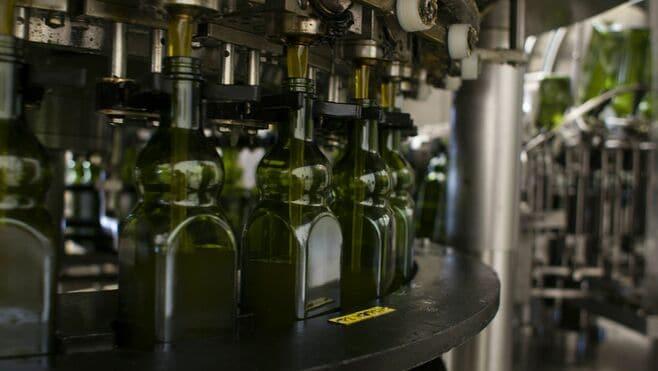 スペイン「オリーブオイル業界」知られざる窮状