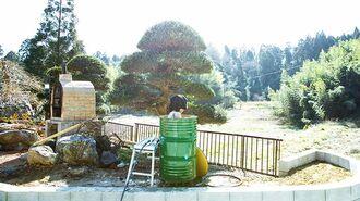 住所非公開サウナ付「古民家キャンプ場」の全貌