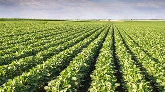 世界で進む農薬メガ再編、日系はどう戦う?