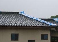津波被害を免れても雨漏りが深刻、梅雨の季節で東日本大震災被災地に悩み