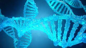 遺伝学の劇的進歩が可能にする「老いなき世界」