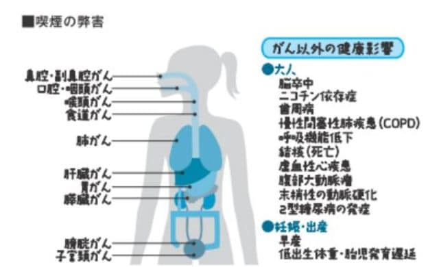 出典:『最強の健康法病気にならない最先端科学編」