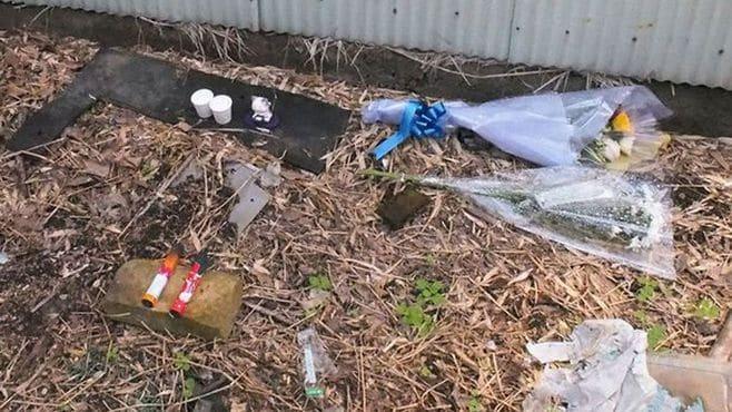 猫を殺傷し動画公開した、ある税理士の実像