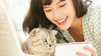 猫が人の言葉を理解しているという確かな根拠