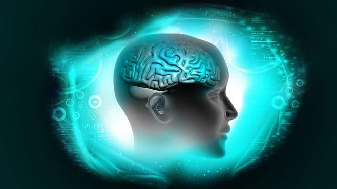 「大人の脳は成長しない」という大きな誤解