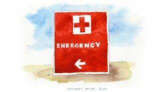 「海外で突然発作」入院して知る意外な医療事情