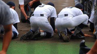 高校野球は甲子園球場を「無料」で使っている
