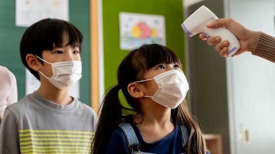 埼玉県コロナ禍の学校調査「学力低下」の可能性も