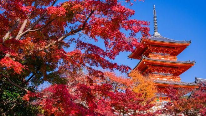 日本株は年末高に向けてちょっとひと休み