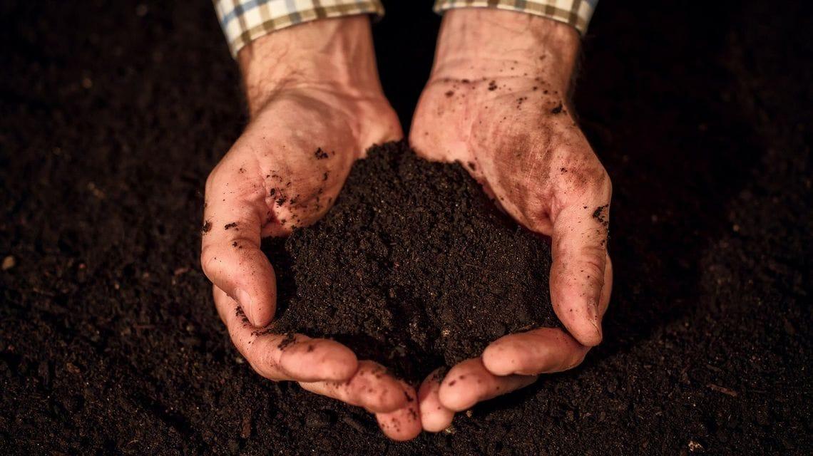 世界の「土」はたったの12種類に分...
