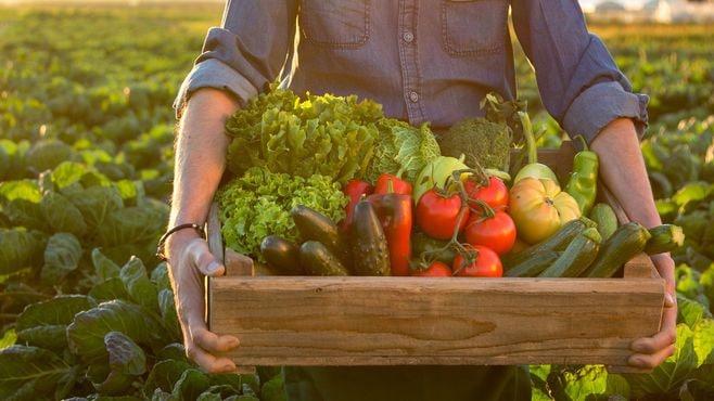 農林物輸出「その他のその他」が品目1位のナゾ