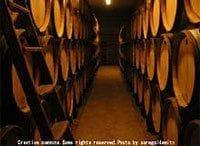 セパージュ時代の到来(5)挫折:南仏アニアーヌ村の事件《ワイン片手に経営論》第19回