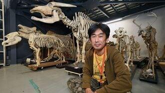 ゾウ埋めて、タヌキ煮る「標本バカ」な男の生活