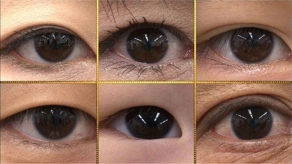 する 黒目 大きく
