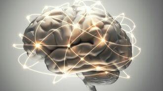 養老孟司「なぜ人間の意識は存在するのか」