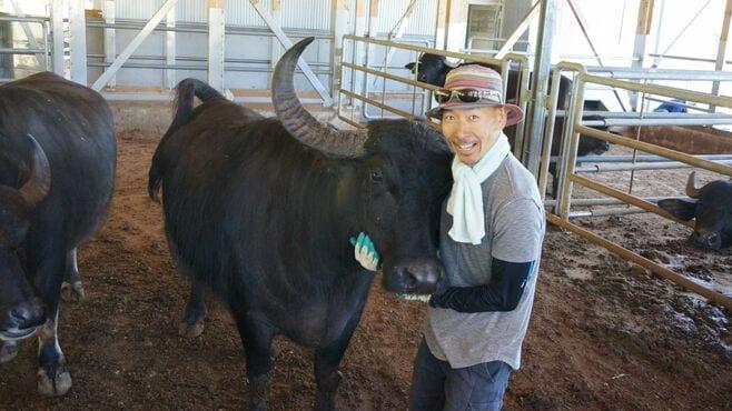 「水牛チーズ」を作る日本人のとてつもない人生